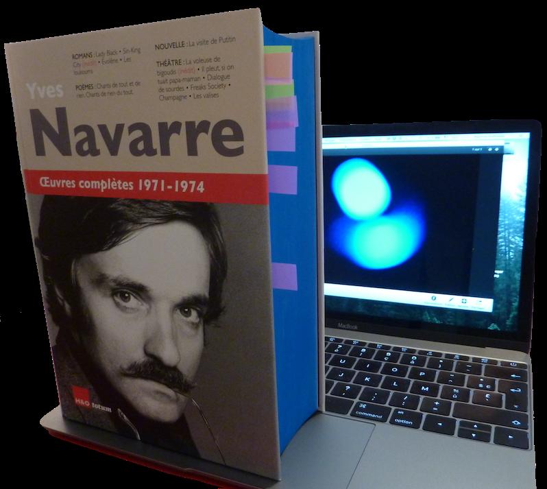 Œuvres complètes d'Yves Navarre :  une vie « par et pour l'écriture »