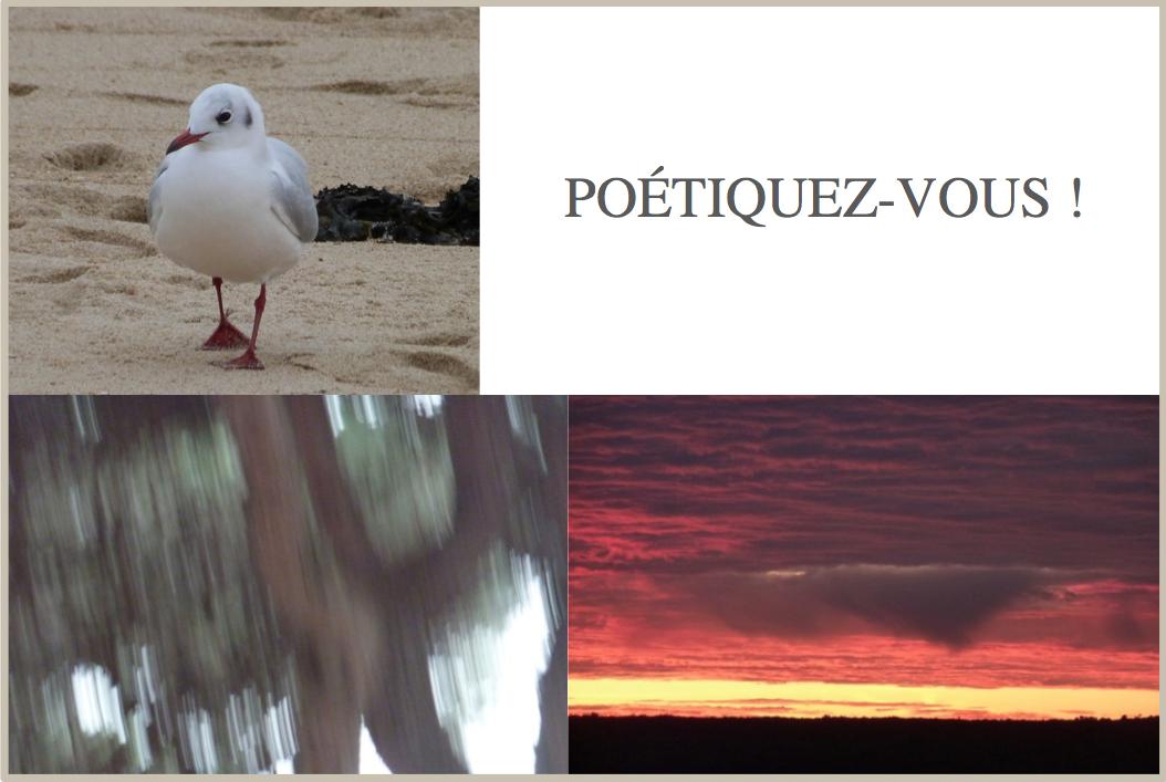 Poétiquez-vous !